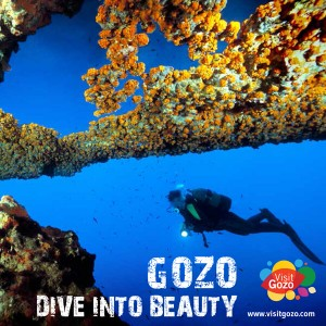 Gozo-dive-into-beauty-booklet-1